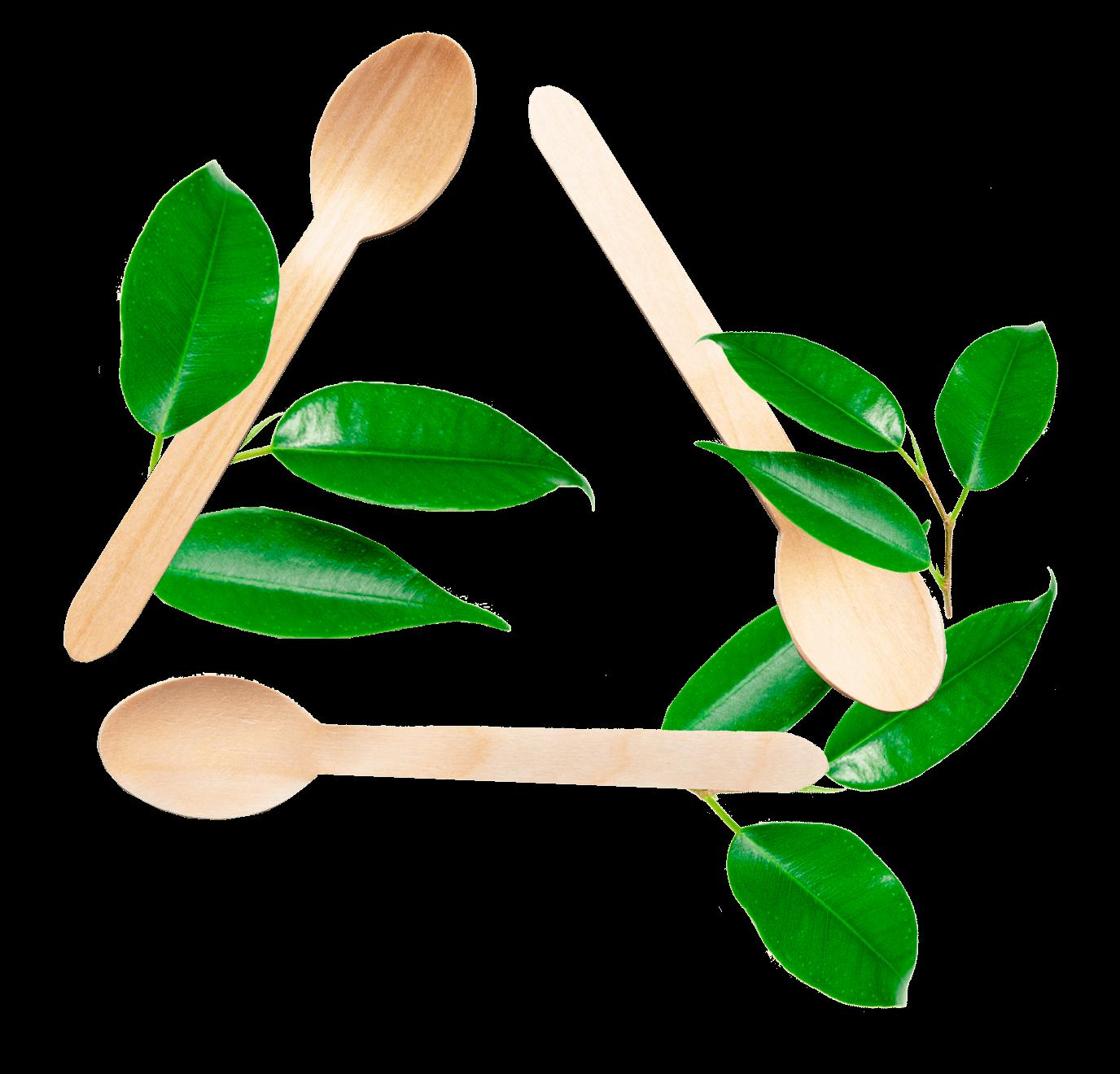 MADERA - Envases biodegradables ECOLINE