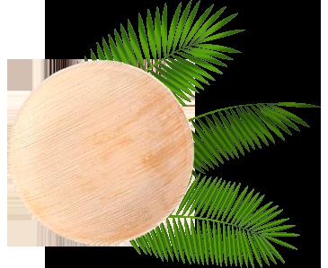 Hoja de palma - Envases biodegradables ECOLINE