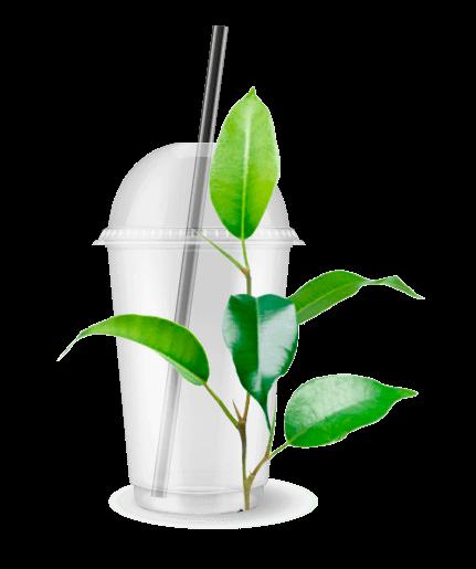 PLA - Envases biodegradables ECOLINE